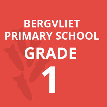 Bergvliet primary grade 1 school books