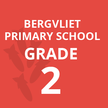 Bergvliet primary grade 2 school books
