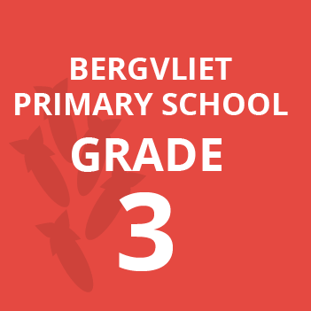 Bergvliet primary grade 3 school books