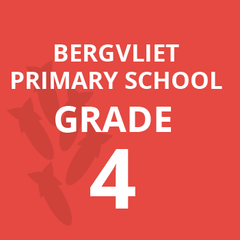Bergvliet primary grade 4 school books