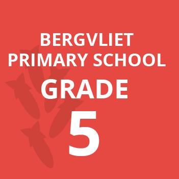 Bergvliet primary grade 5 school books